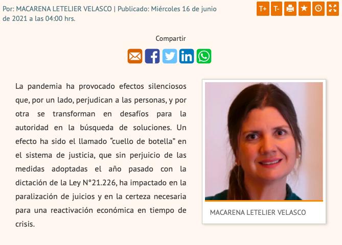 Columna de Opinión – Directora Ejecutiva del CAM Santiago