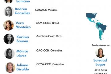 Ciclo sobre Mediación y/o Conciliación Civil y Comercial en América Latina: Una Panorámica Continental